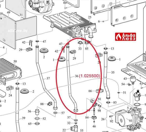 Трубка холодной воды под номером 36 на схеме 1-025500 на котел Immergas Eolo Star 24 Квт